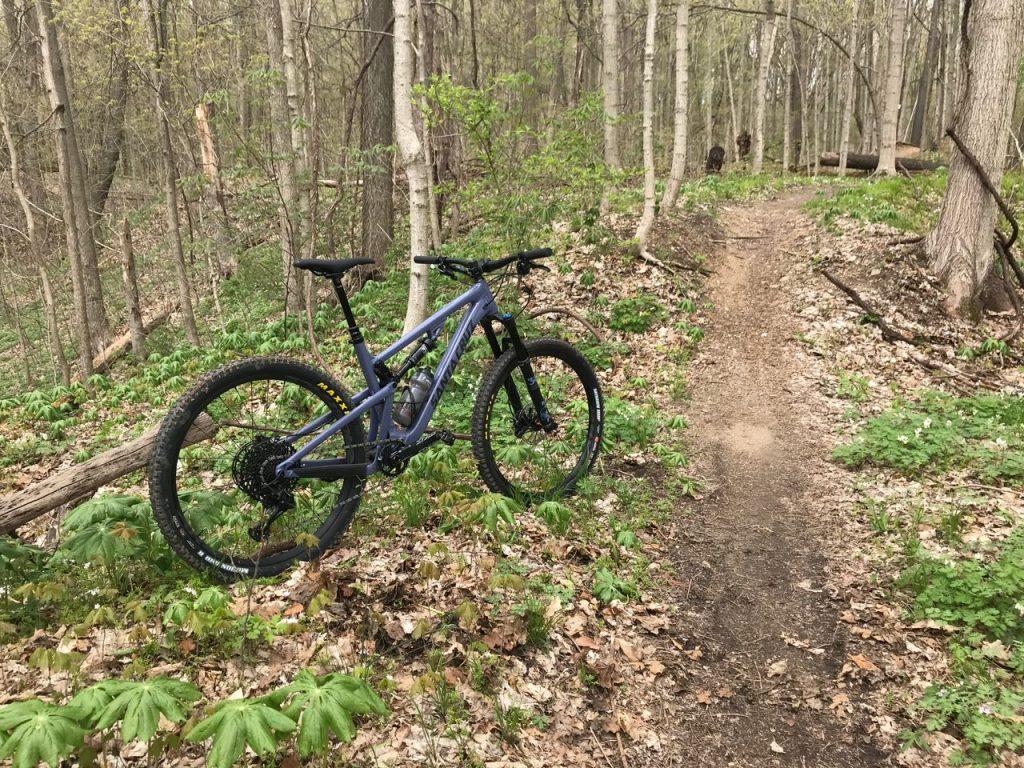 Rock Shox BOXXER 2019 Mountain Bike Cycling Decal Kit Sticker Adhesive Black 1